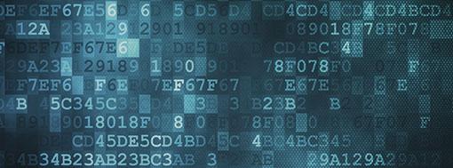 Documentación técnica de VSN