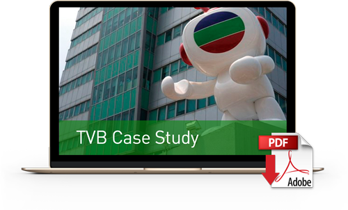 Download TVB Case Study