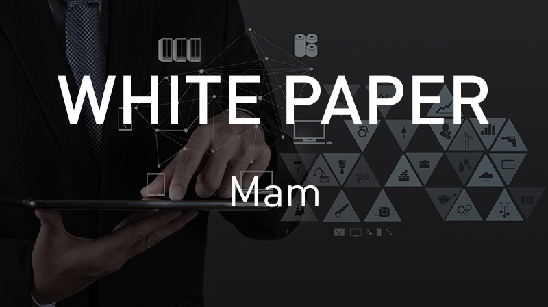 Download VSN's MAM White paper