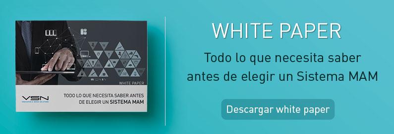 White Paper MAM